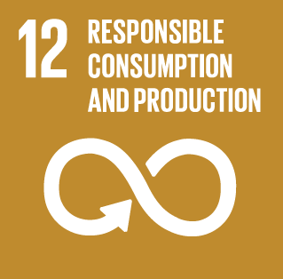 Sustainability development goal 12