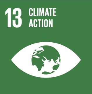 Sustainability development goal 13